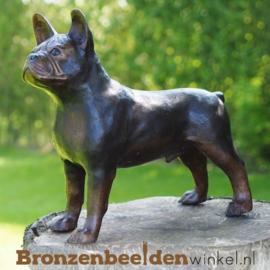 Franse Bulldog beeld van brons BBW94566