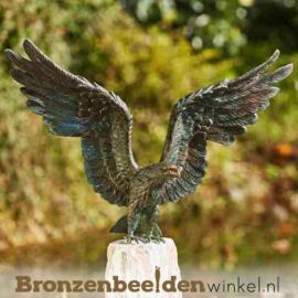Bronzen zeearend beeld BBWR89001