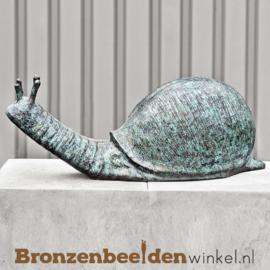 Tuinbeeld slak in het groot BBW0416br