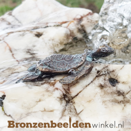 Drie schildpad beeldjes BBWR90327