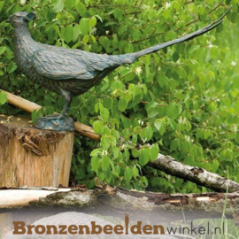 Bronzen fazant beeld BBWR88463