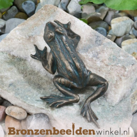 Kikker beeld brons BBWR88497