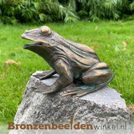 Kikkerbeeld van brons BBWR90110