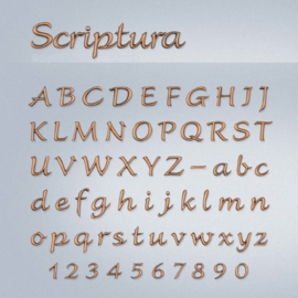 Losse letters Scriptura 45 - 60 mm