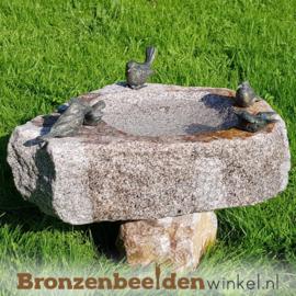 Vogeldrinkbak op voet met 5 vogeltjes BBWR42046v5