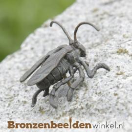 Beeld horzel in brons BBWR88257