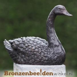 Zwaan beeld in brons BBW1343br
