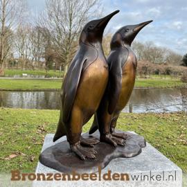 Beeld pinguïns BBW1302
