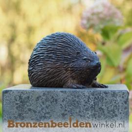 Bronzen egel beeld BBW1171br