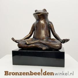 Mediterende kikker beeld BBW6524BR