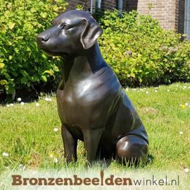 NR 4 | Cadeau man 40 jaar ''Labrador'' BBW678