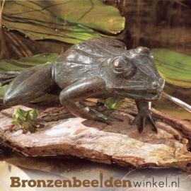 Kikker spuitfiguur brons BBWR88253