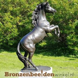 Groot beeld paard BBW1096br