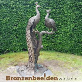 Bronzen pauwen beeld BBW1116