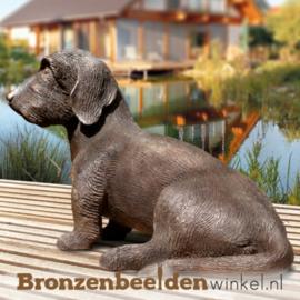 Aandenken overleden tekkel hond BBW87447