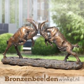 Bronzen bokken BBW75970