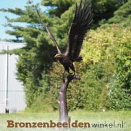 Beeld vliegende zeearend in brons BBW1338br