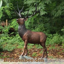 Groot beeld bronzen hert voor in de tuin BBW955