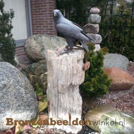Bronzen beeld valk BBW78100