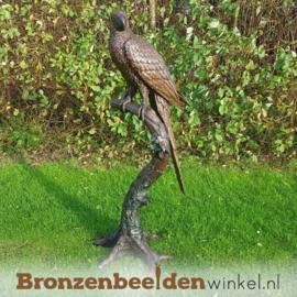Bronzen beeld papegaai BBW1147