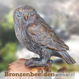Beeld uil van brons BBW37235