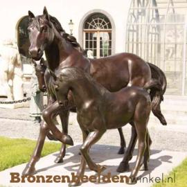 Beeld paard met veulen BBW1001