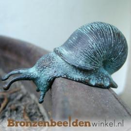 Bronzen slak beeldje BBWAN1086BR