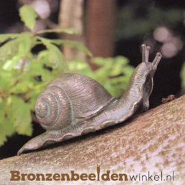 Beeld slak in brons BBW88044