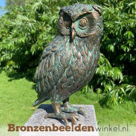 NR 5 | Cadeau man 85 jaar ''Beeld uil brons - steenuil'' BBWR89002