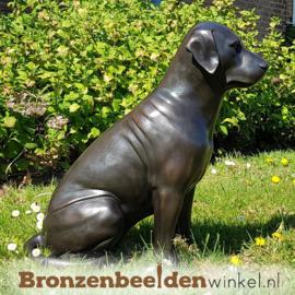Hondenbeeld Labrador van brons BBW678