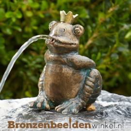 Koningskikker beeld Abel BBWR88880