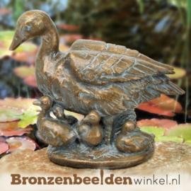 Bronzen eend met kuikens BBW88910