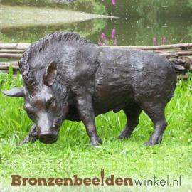 Tuinbeeld zwijn brons BBW56172