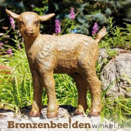 Beeld geitje van brons BBWR88853