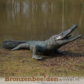 Bronzen alligator beeld BBWB844