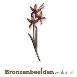 Beeld orchidee BBW20148