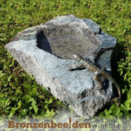 Vogeldrinkschaal met salamander BBWR994349