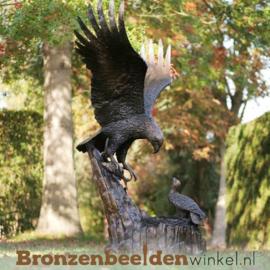 Levensgroot adelaar beeld BBW1024br