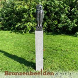 Bronzen uil beeld BBW94533br