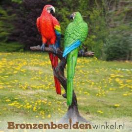 Bronzen papegaaien beeld BBW1147-2