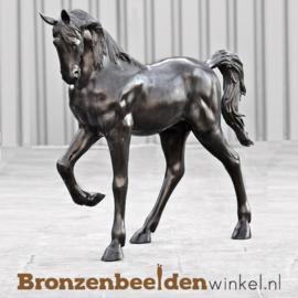 Beeld paard als tuinbeeld BBW1003