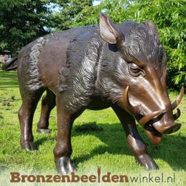 Tuinbeeld zwijn van brons BBW56170