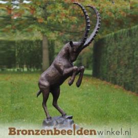 Steigerende steenbok beeld brons BBW1275