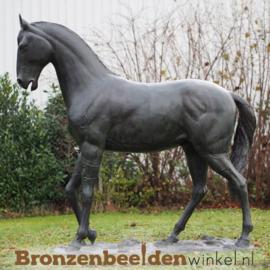 Bronzen tuinbeeld paard BBW674