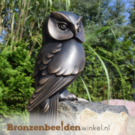 NR 9   Bronzen uilen beeldje BBW37234