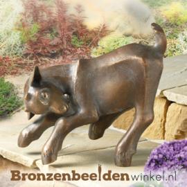 Bronzen geitje BBW37190