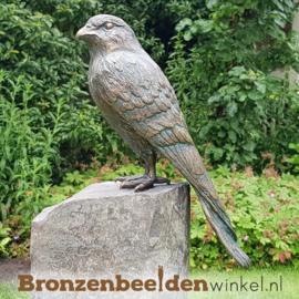 Bronzen torenvalk beeld BBWR88462