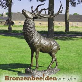 Bronzen hert op rots BBW67010