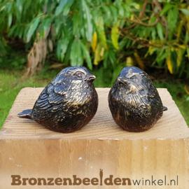 Twee kleine winterkoninkjes BBW0405br