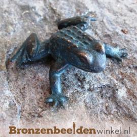 Bronzen kikkers